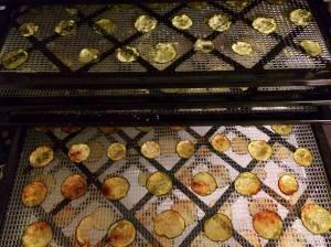 zucc chips